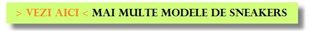 model-standard-pt-introdus-reclame-in-site - Copy